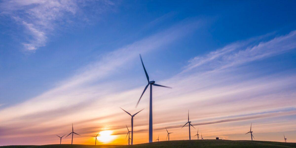 Które źródło energii jest tańsze? Energia wiatrowa, czy panele słoneczne?